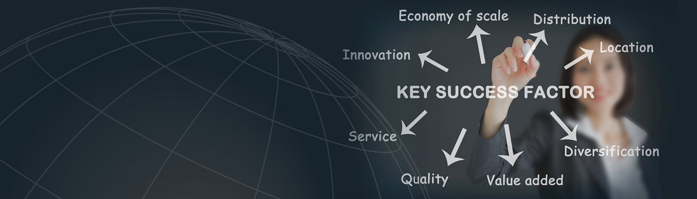 Key Success Factors: Quality Management, API SPEC Q1, ISO 9001, API Monogram Program Licensing, ASME Pressure Vessel Code, European Union CE Directives & Electrical / Electronic Product Safety Approvals, Economy of Scale, Distribution, Innovation, Service, Value Added, Diversification, Location